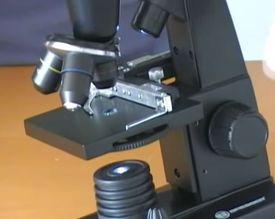 Предварительный просмотр фотографии Bresser Biolux LCD 50x-2000x