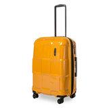 Crate EX Solids (M) Zinnia Orange